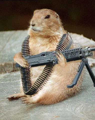 ArmedChipmunk.jpg